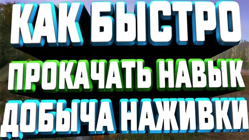 ●●●Русская Рыбалка 4●●●Как быстро прокачать навык добыча наживки●