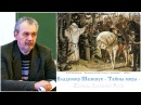 Владимир Шемшук Тайны мира Жрецы Древней Руси