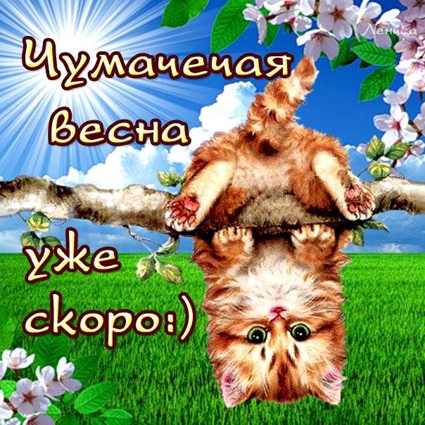 Фото №297724450 со страницы Раксаны Мухамадиевой