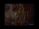 Убить дракона реж Марк Захаров, 1988