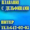 Дельфинарий. Плавание с дельфинами в Петербурге!