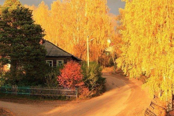 Русская деревня. Красиво!