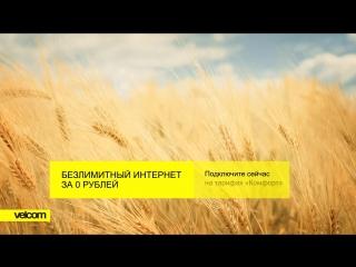 Безлимитный интернет на тарифах «Комфорт» за 0 рублей / поле