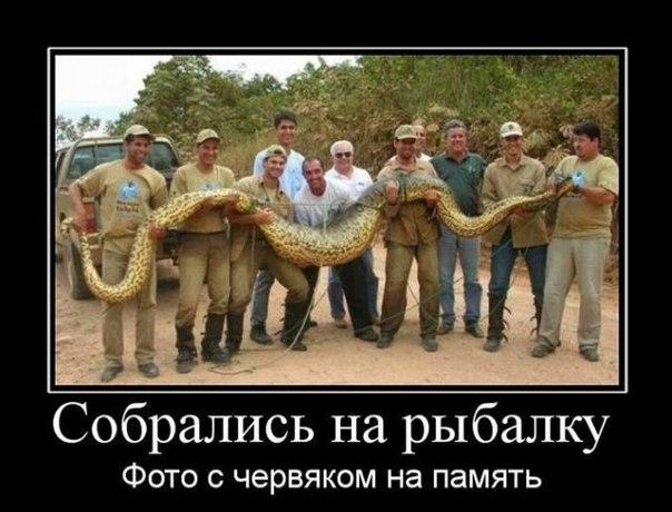 http://cs617228.vk.me/v617228041/22553/9iWH2Eb8Wfk.jpg