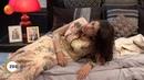 Kumkum Bhagya Best Scene Episode 1062 Shabbir Ahluwalia, Sriti Jha Zee TV