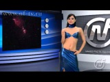 Naked news Russian  Naked Facts NFTV kosmos logo preview