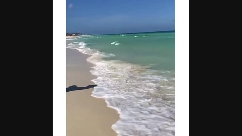 😍 Весточка с Кубы, а точнее с острова Кайо-Коко! Ну кайф же, правда 🙏🔥🌅 🎉😘 klintour_весточки . Кубе и её островам никакие фильт