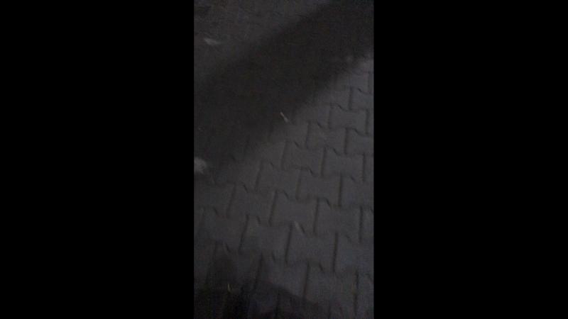 Екатерина Ким — Live