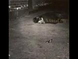 Naked City - Naked City (Remastered) Full Album 1989