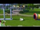 [Maggsie] The Sims 4: Пятнистая Жизнь 20   Экзамен   КОШКИ И СОБАКИ  