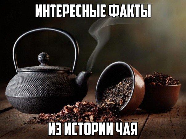 Интересные факты из истории чая