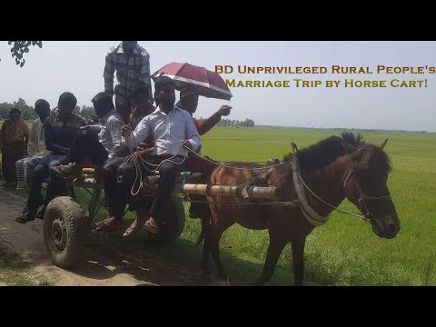 BD Unprivileged Rural People's Marriage Trip by Horse Cart!