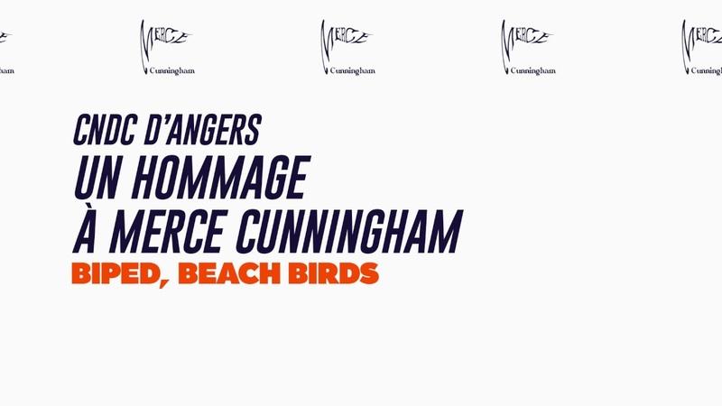 18e Biennale de la danse : Merce Cunningham / BIPED, Beach Birds