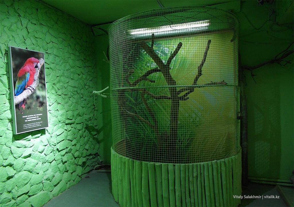 Пустая клетка, дом птиц, зоопарк Алматы 2018