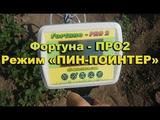 Фортуна- ПРО 2 Режим пин-поинтер