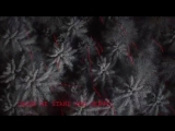 Don Diablo - Survive feat. Emeli Sande