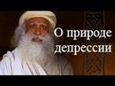 Садгуру О природе депрессий Джагги Васудев