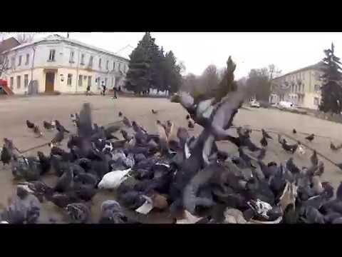 И СНОВА ЛЕГЕНДАРНАЯ КАХОВКА Каховка 31 01 2019
