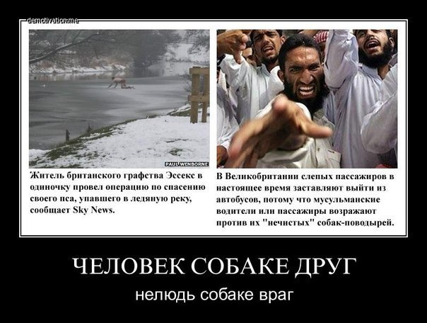razvrat-i-islam