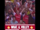 Best goals of Wenger: Robin van Persie
