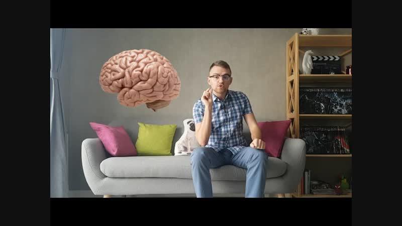 Эволюция головного мозга человека. Функции мозга на каждом этапе его развития. Часть 1. djk.wbz ujkjdyjuj vjpuf xtkjdtrf. aeyrw