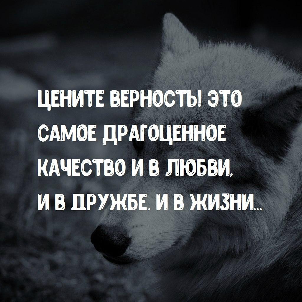https://pp.userapi.com/c543105/v543105769/34866/cgrJyzn7-0w.jpg