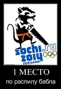 Олимпиада 2014 - «фиговый листок» режима