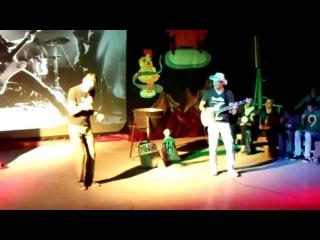 Dvorniks - Котик (выступление на конкурсе