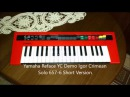 Yamaha Reface YC Demo Igor Crimean Solo 657 6 Short Version