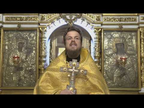 Проповедь иерея Василия Лакомкина в Неделю 21-ю по Пятидесятнице