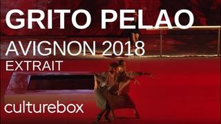 Festival d'Avignon 2018 – Grito Pelao – Rocio Molina - (extrait)