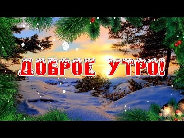Пожелание с добрым утром Хорошего дня и отличного настроения