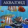 Морской аквариум на заказ в Москве!