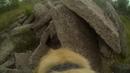 Поисково-спасательная служба (ПСС) Орёл