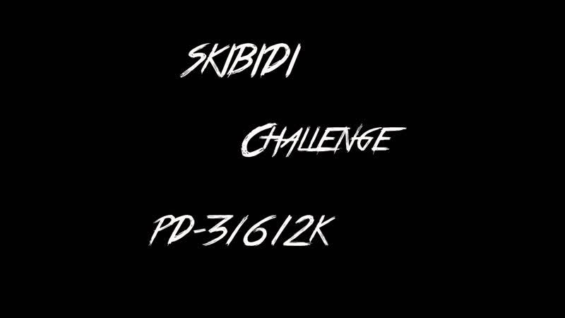 Skibidi Challenge (ПД-3162К)