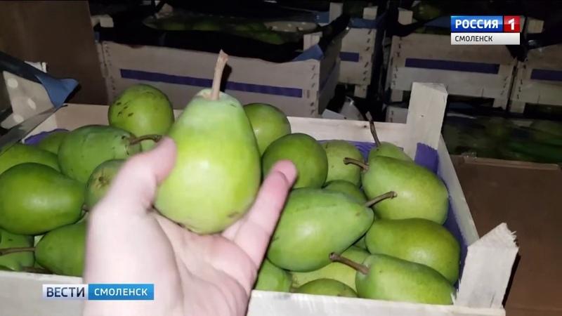 Смоленские таможенники снова задержали «продуктовых нелегалов»