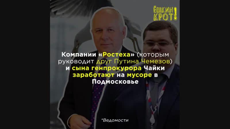 Друзья Путина «позаботятся» об экологии, сжигая ртутные отходы?