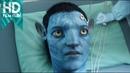 Avatar   İlk Bağlantı   HD