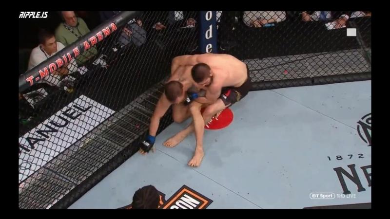 UFC 229 - КИПИШ ПОСЛЕ БОЯ