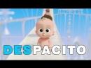БОСС МОЛОКОСОС ДЕСПАСИТО _ The Boss Baby DEPASITO