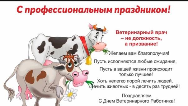 den-veterinarnogo-rabotnika-otkritki-s-pozdravleniyami foto 12