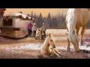 Рождественский жеребёнок - фильмы зарубежные 2013 про лошадей