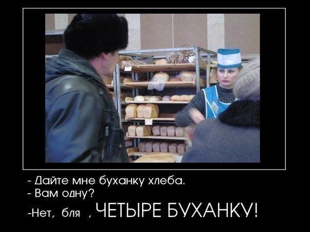 http://cs14115.userapi.com/c7008/v7008510/12aa/7n-sHOSzHhs.jpg