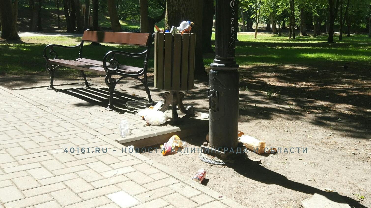 «Впечатление, что в выходные мусор не вывозится»: что происходит в Советске?
