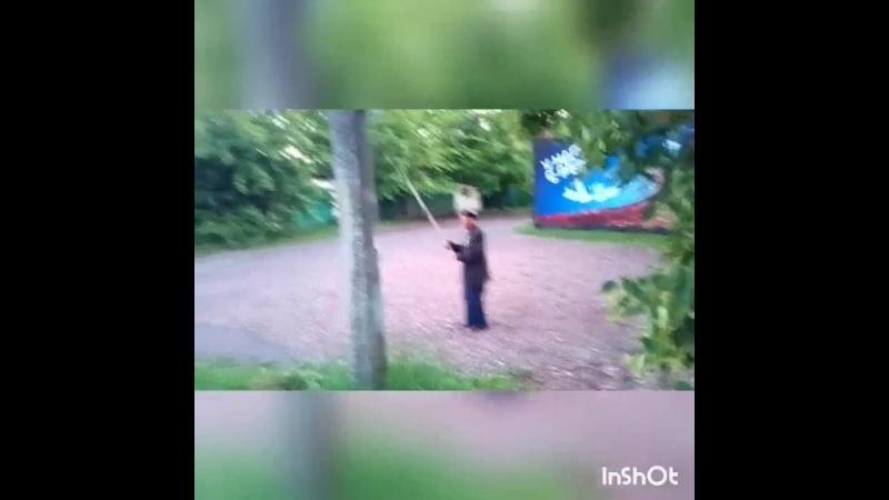 InShot_20180614_002225969.mp4