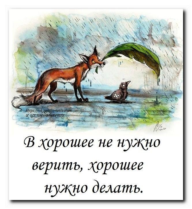 http://cs616526.vk.me/v616526723/7c25/GT9bTPoHKlQ.jpg