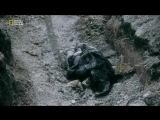 Первая мировая война в цвете Ч3. Документальный фильм National Geographic.