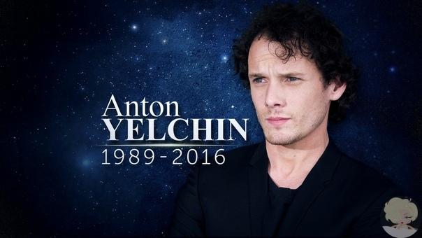 Родители Антона Ельчина сняли документальный фильм о погибшем актере