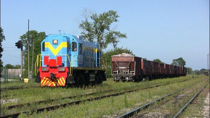 Тепловоз ТЭМ2УМ-110 на ст. Раквере / TEM2UM-110 at Rakvere station