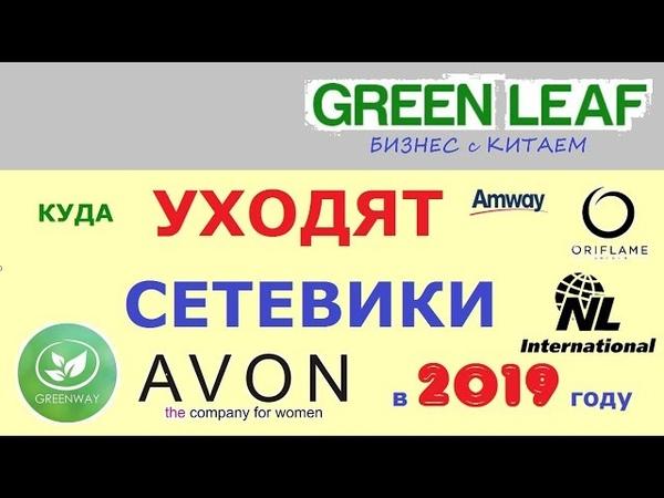 GreenLeaf презентация из ОФИСА компании в Москве